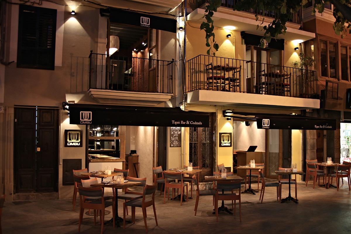 terraza-ombu-palma